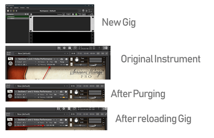 Session Strings Pro purge ignored when reloading | NI
