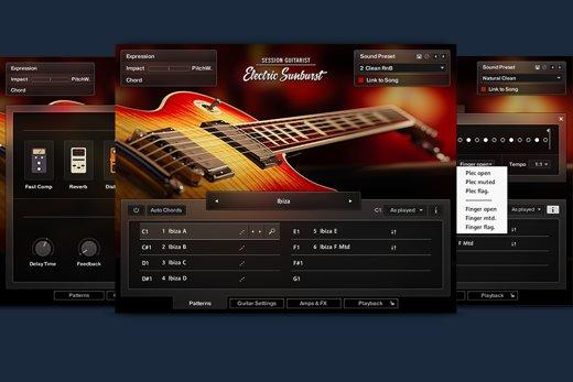 session guitarist