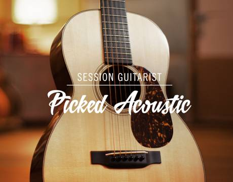 NATIVE INSTRUMENTS - Session Guitarist | Picked Acoustic 1.1.0 [KONTAKT LIBRARY] [WIN/MAC] [7.9GB] [INSTALLER] [RG DIRECT]